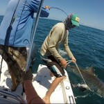 reef-fishing-nearshore6