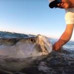 long-overdue-charters-fishing